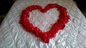 1000 petali di raso rosso, matrimonio, anniversario, natale, san valentino