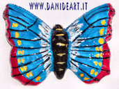 Calamita Butterfly