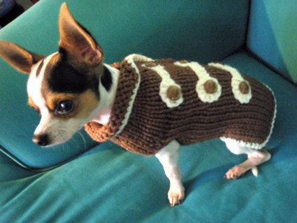 "cappottino per chihuahua o piccoli cani ""alamari"""