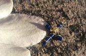 Ciondolo a croce con perline Miyuki blu, piccolo cristallo e filo per gioielli dorato