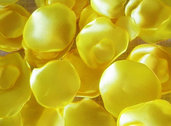 Petali finti, petali di stoffa giallo limone, matrimonio, 100 petali