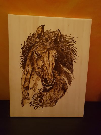 Quadro Frontale Cavallo