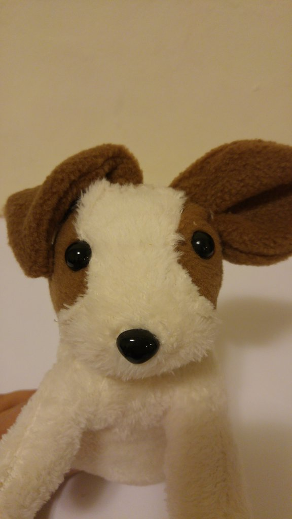 Peluches Jack Russel