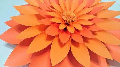 Giant Paper Flower Dalia Fiore In Carta Dalia