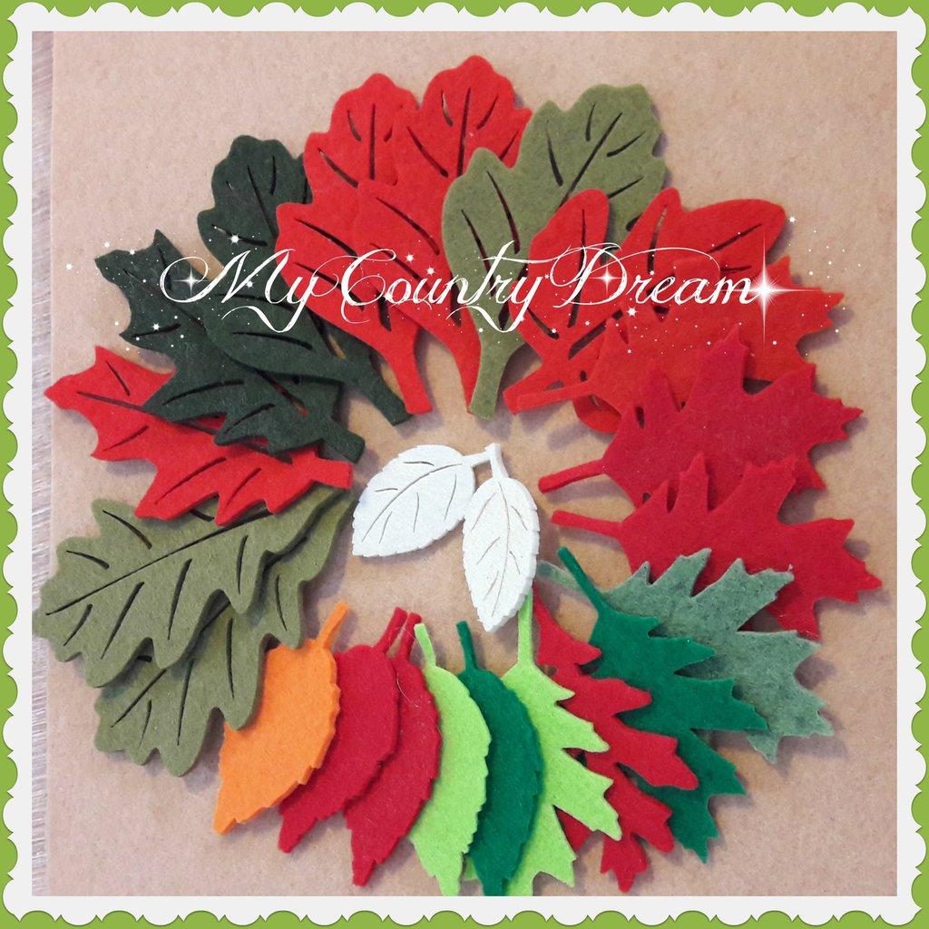 Set foglie feltro