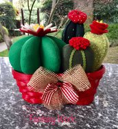 Composizione di 4 cactus con cestino di vimini rosso