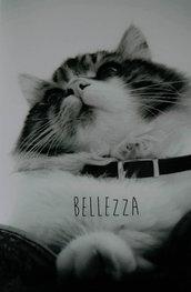 Biglietti d'auguri artistici con gatti e poesie