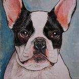 Ritratto bulldog francese tecnica mista