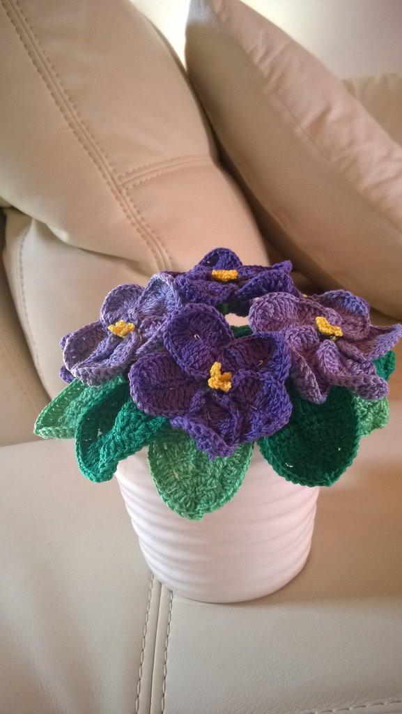 vasetto di violette