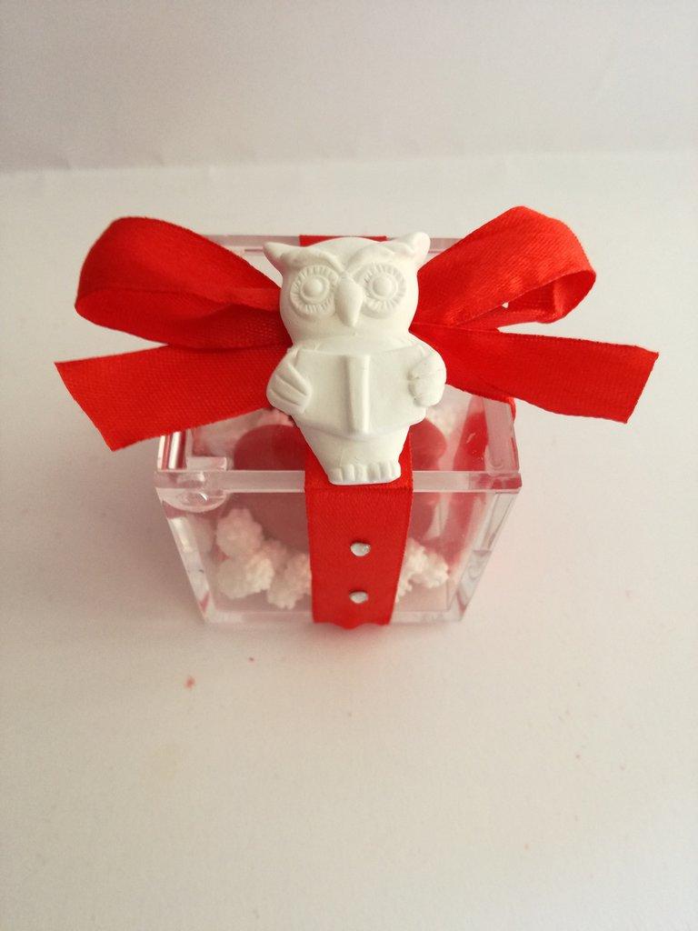 Bomboniera porta confetti sacchetto plexiglass scatolina laurea tocco pergamena gufetto