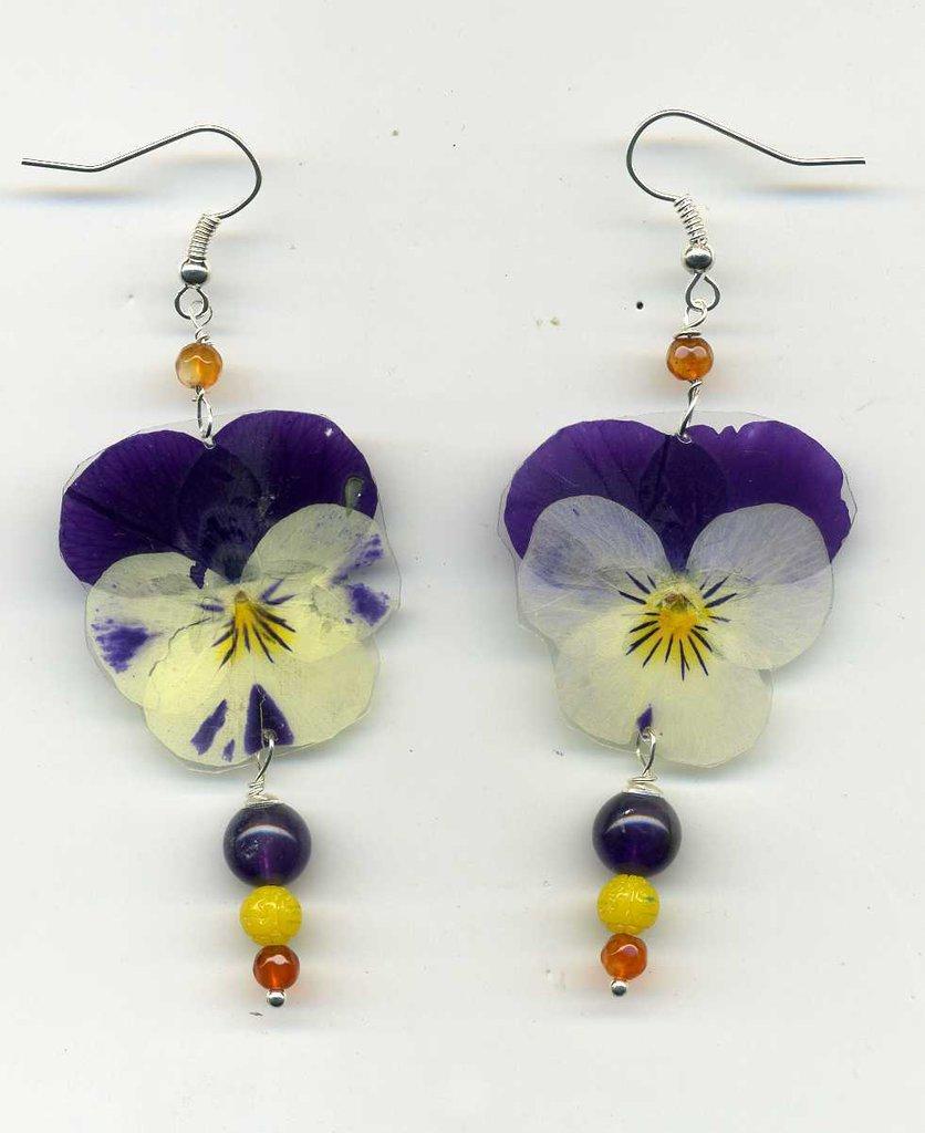 Orecchini con viola del pensiero bicolore vera, essiccata e plastificata