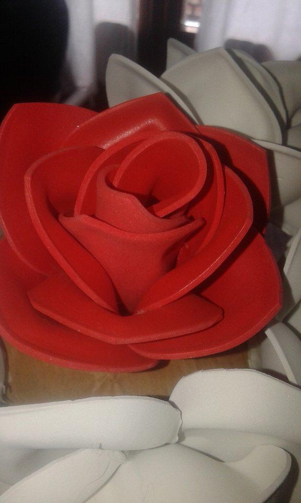 Rose di gomma eva