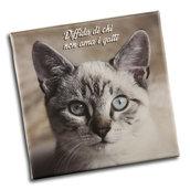 """STAMPA SU TELA ALTA QUALITÀ - fotoquadro - STAMPA ARREDO - frase """"Diffida di chi non ama i gatti"""" - TELA 20 X 20"""