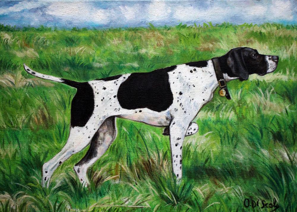 Ritratto cane pointer olio su tela