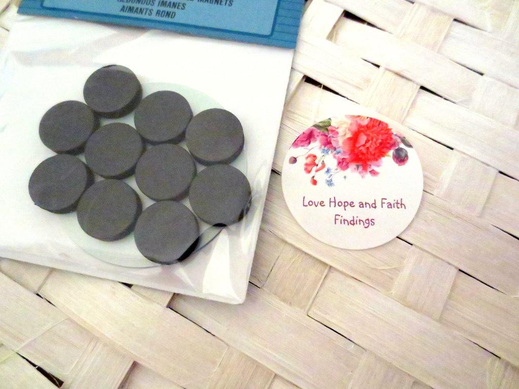 10 Magneti/calamite in ceramica (16 mm)