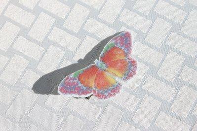 Molletta capelli farfalla
