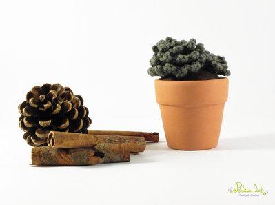 Piantina grassa verde ad uncinetto e vaso in terracotta 5 cm di diametro