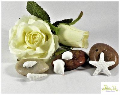 Mix Mini Conchiglie in gesso ceramico profumato.