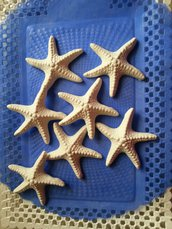 Gessetto profumato stella marina