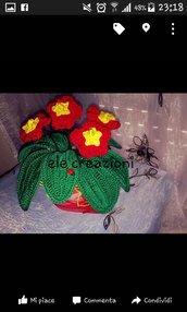 piante da decorazione