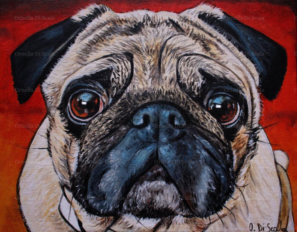 Ritratto cane carlino acrilico su cartone telato