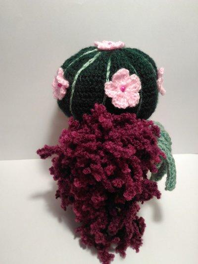 cactus rotondo | Cactus de ganchillo, Cactus tejidos al crochet ... | 533x400