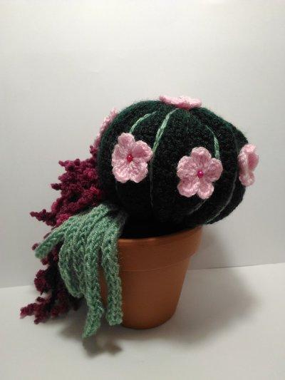 Disfrutar de su cactus lindo ganchillo! - YouTube | Cacto de ... | 533x400