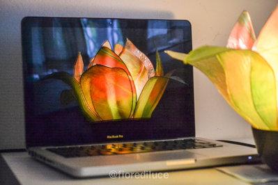 lampada fiore bocciolo