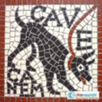 Disegno per mosaico CAVE CANEM