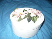scatola bianca fiori sospesi