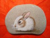 Il coniglietto baby