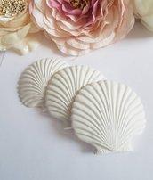 conchiglie in gesso ceramico