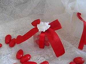 Bomboniera confezionata Laurea con coccinella o gufo o ape scatolina plexiglass