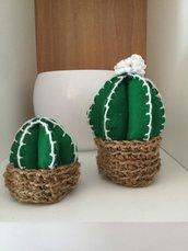 Piantine cactus in pannolenci