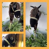Cavallo a bastone