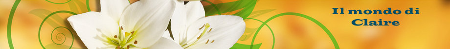Store_banner_11272_normal