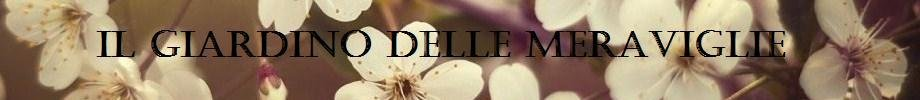 Store_banner_11318_normal