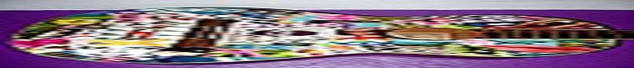 Store_banner_11606_normal