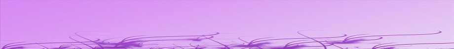 Store_banner_12913_normal